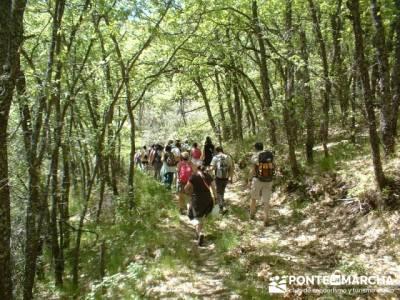 Ascensión a Valdebecerril - senderismo comunidad de madrid; trekking semana santa